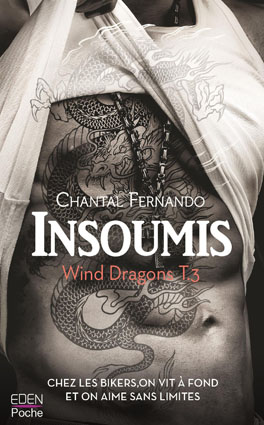 Couv Insoumis – Wind Dragons tome 3